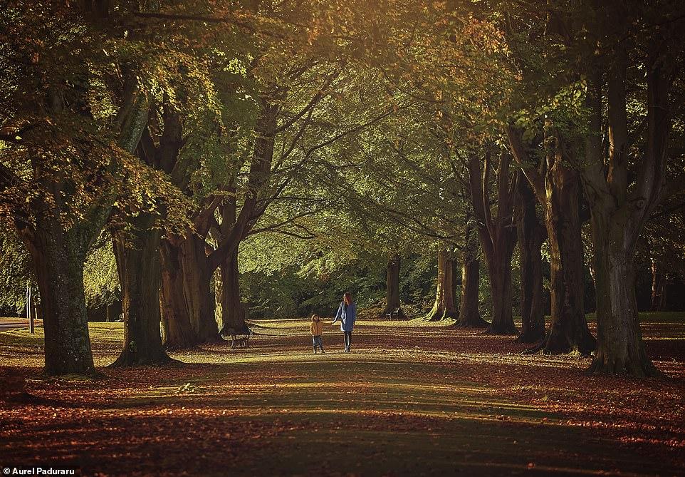 28158964 8300951 An autumn like scene in the Clifton area of Bristol Aurel said W a 26 1589184951743